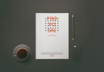 Business Plan Proposal Layout With Red Accents