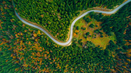 Scenic aerial view looking at a winging road in the middle of the colorful forest during fall season.