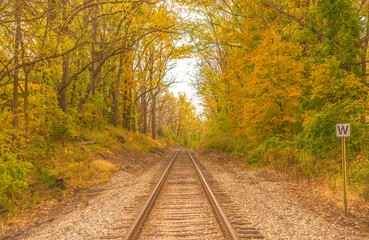 Old railroad tracks passing through colorful autumn woods in Vernon, New Jersey
