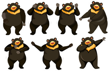 Set of bear dance position