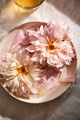 Overhead view of pink dahlias in bowl