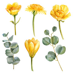 Watercolor yellow spring flower set with leaves