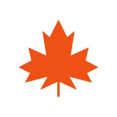 maple leaf logo icon design template vector
