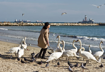 Woman feeding swans on the beach by the sea