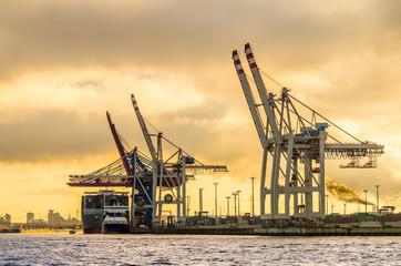 Hamburg container terminal tollerort Sonnenuntergang