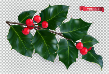 Holly traditional christmas decoration, 3d realistic vector icon