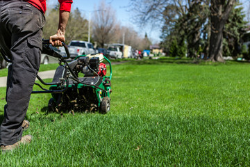 Man using a lawn aerator in a suburban environment as part of a landscaping project - back view. Collection that highlights the various landscaping tools, seasonal jobs and tasks.
