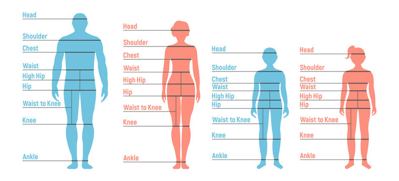 Man, woman, boy and girl Size Chart. Human front side Silhouette. Isolated on White Background. Vector illustration