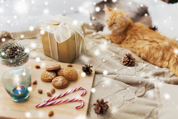 Fototapete - hygge and christmas concept - red tabby cat lying on blanket with gift, oatmeal cookies and candle at home over snow