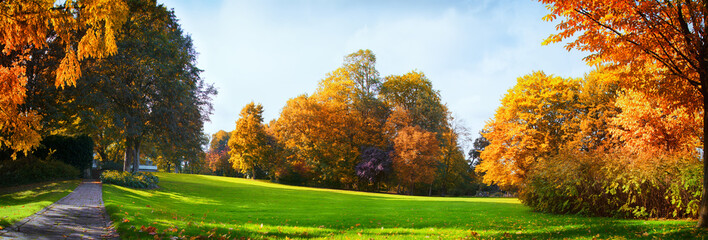 Colorful Autumn Trees And Blue Cloudy Sky - Seasonal Park Without Any People