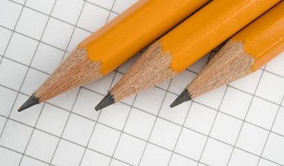 Pencils are on a notebook in a cage. Close up.