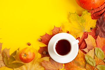 autumn background of free space and autumn time