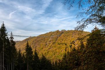Hängebrücke im Wald und Berg im Herbst