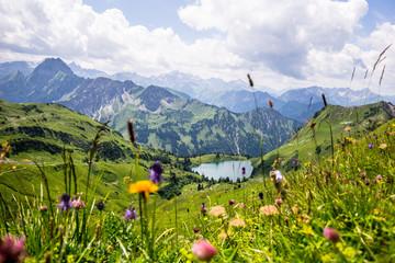 Seealpsee in den Allgäuer Bergen - Bergsee im Allgäu