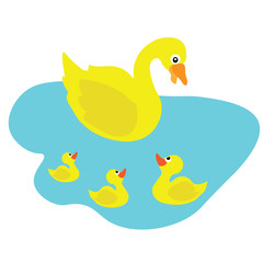 The duckling is taking care of its children.