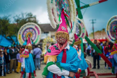 Manos Istmenas Baile Flores Oaxaca Stock Photo And Royalty Free