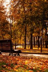 St Volodymyr Hill Park, Kyiv