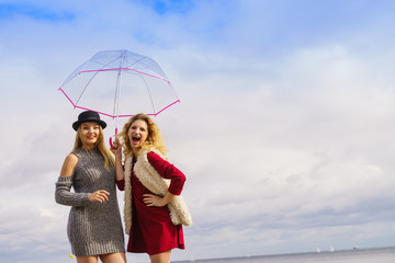 Two fashionable women and umbrella