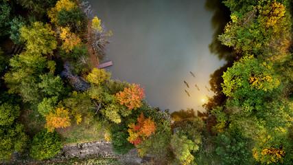 Luftbild im Herbst auf einen kleinen See