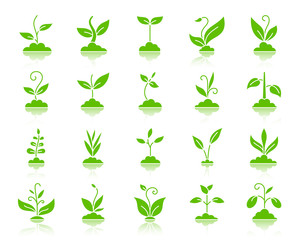 Grass color silhouette icons vector set