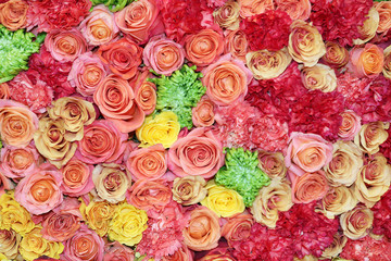 flower picture of roses, carnations and chrysanthemums