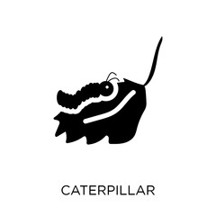 Caterpillar icon. Caterpillar symbol design from Agriculture, Farming and Gardening collection.
