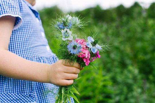 Little girl holding a bunch of Nigella flowers