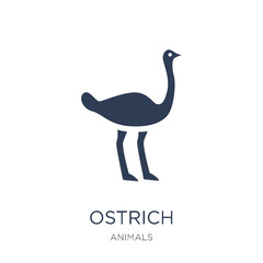 Ostrich icon. Trendy flat vector Ostrich icon on white background from animals collection