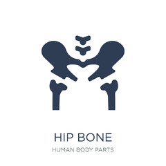 Hip Bone icon. Trendy flat vector Hip Bone icon on white background from Human Body Parts collection