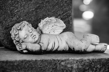 Closeup of stoned angel sleeping on tomb in cemetery
