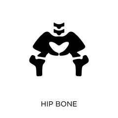 Hip Bone icon. Hip Bone symbol design from Human Body Parts collection. Simple element vector illustration. Can be used in web and mobile.