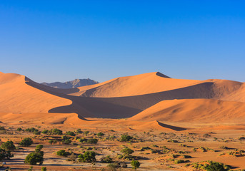 Red sand dunes of the Namib desert in morning light