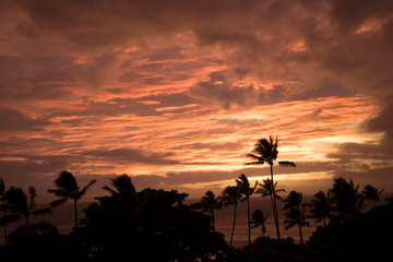 Vivid Orange Clouds Fill Sunset Sky as Hurricane Weather Approaches over Ocean