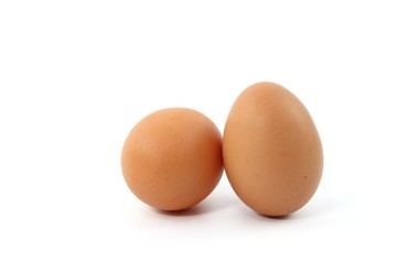 Egg fresh food