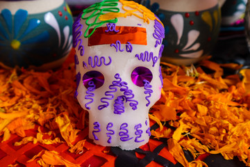 Sugar Skull Surrounded by Marigold Petals for Day of the Dead in Mexico
