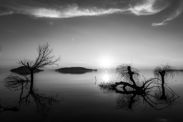 Beautiful sunset at Trasimeno lake (Umbria), with perfectly still water and skeletal trees