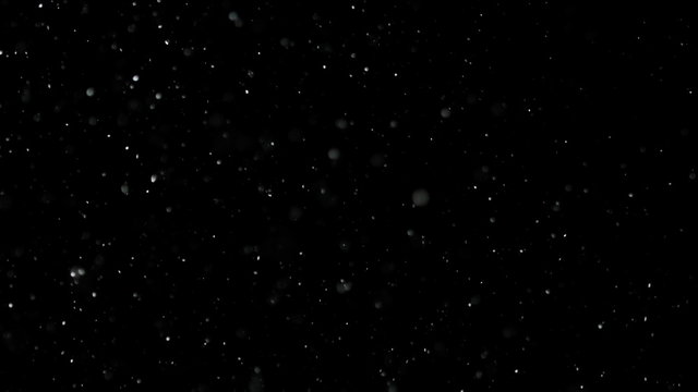 White Snow Falling on Isolated Black Background, Shot of Flying Snowflakes Bokeh, Dust Particles or Powder in the Air. Holiday Overlay Effect