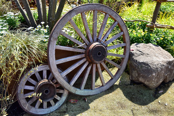 The wooden wheel which was put in the ground of the garden