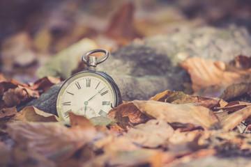 Retro Taschenuhr auf Steinuntergrund, braune Blätter, Herbst, Symbol für Zeit