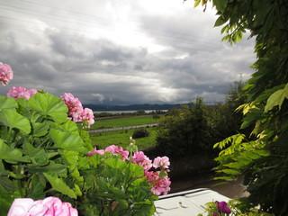 fotos de paisajes varios lagos flores varias