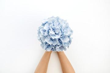 Zelfklevend Fotobehang Hydrangea Woman hands hold blue hydrangea flower bouquet on white background. Flat lay, top view.