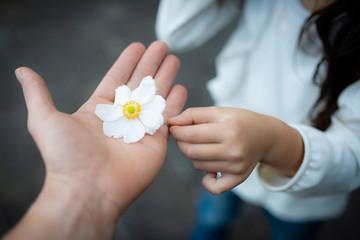 白い花を手渡す親子