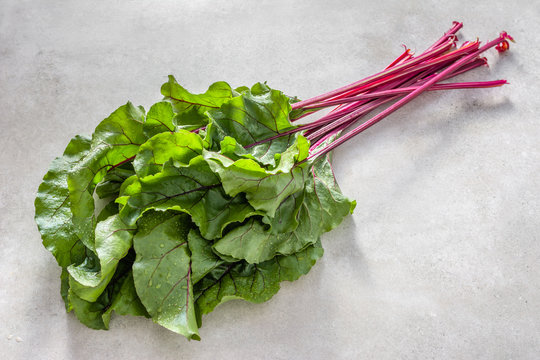 Freshly harvested organic produce - farm fresh leaves of beet, green leafs and red stem