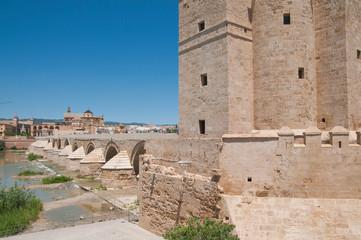 Puente Romano, Torre de la Calahorra, Córdoba, Andalusien, Spanien