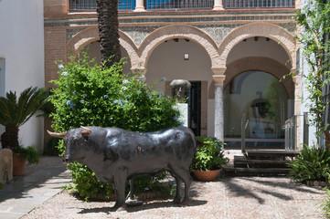 Stierkampfmuseum Córdoba, Museo taurino, Cordoba, Andalusien, Spanien