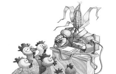 elections with corncob