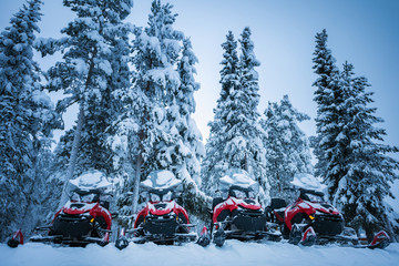 Fototapeta Row of red and black snowmobiles in winter Lapland