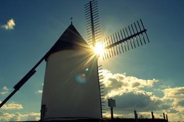 Foto auf AluDibond Mühlen moulin de jard-sur-mer en vendée,sous le soleil d'automne