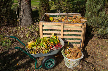 Image of compost bin in the autumn garden