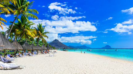 Wall Mural - Best tropical beaches. Flic en Flac in Mauritius island
